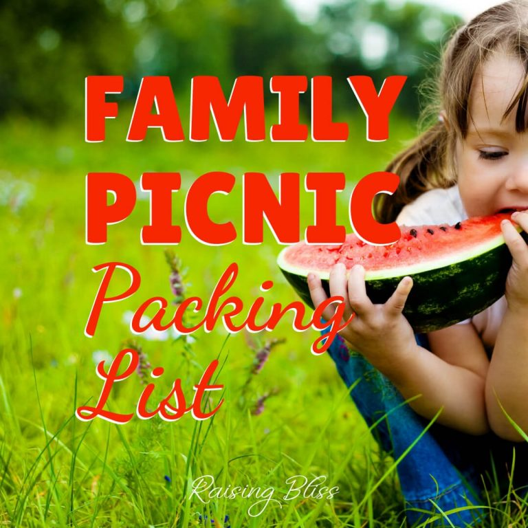 Family Picnic Packing List